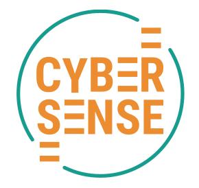 Cyber Sense Logo for the Rowdy Inc Portfolio Page
